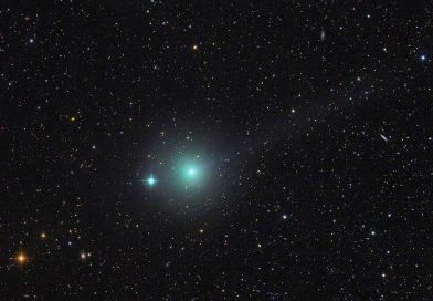 In arrivo… la Cometa C/2018 Y1 Iwamoto